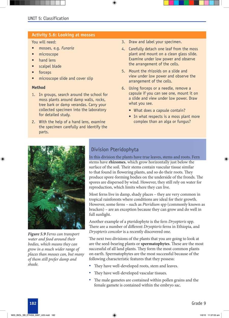 Biology grade 9                                      part 3                                  page 12