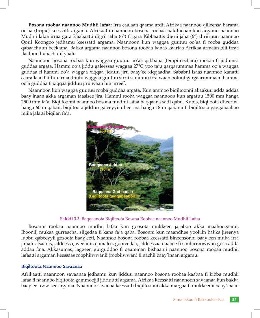 Social Studies grade 7                                  page 61