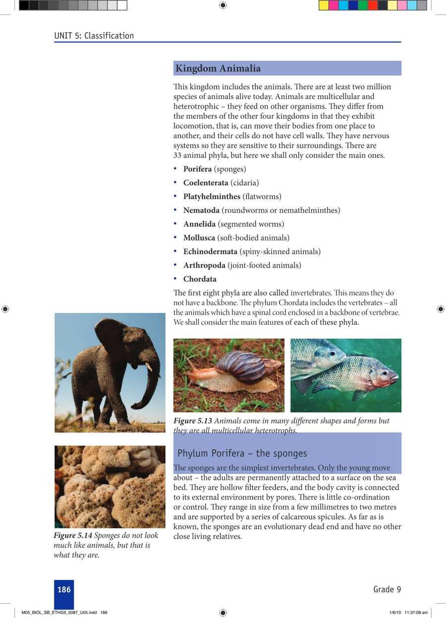 Biology grade 9                                      part 3                                  page 16