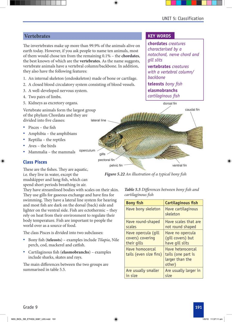 Biology grade 9                                      part 3                                  page 21