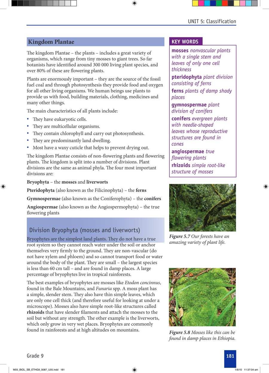 Biology grade 9                                      part 3                                  page 11