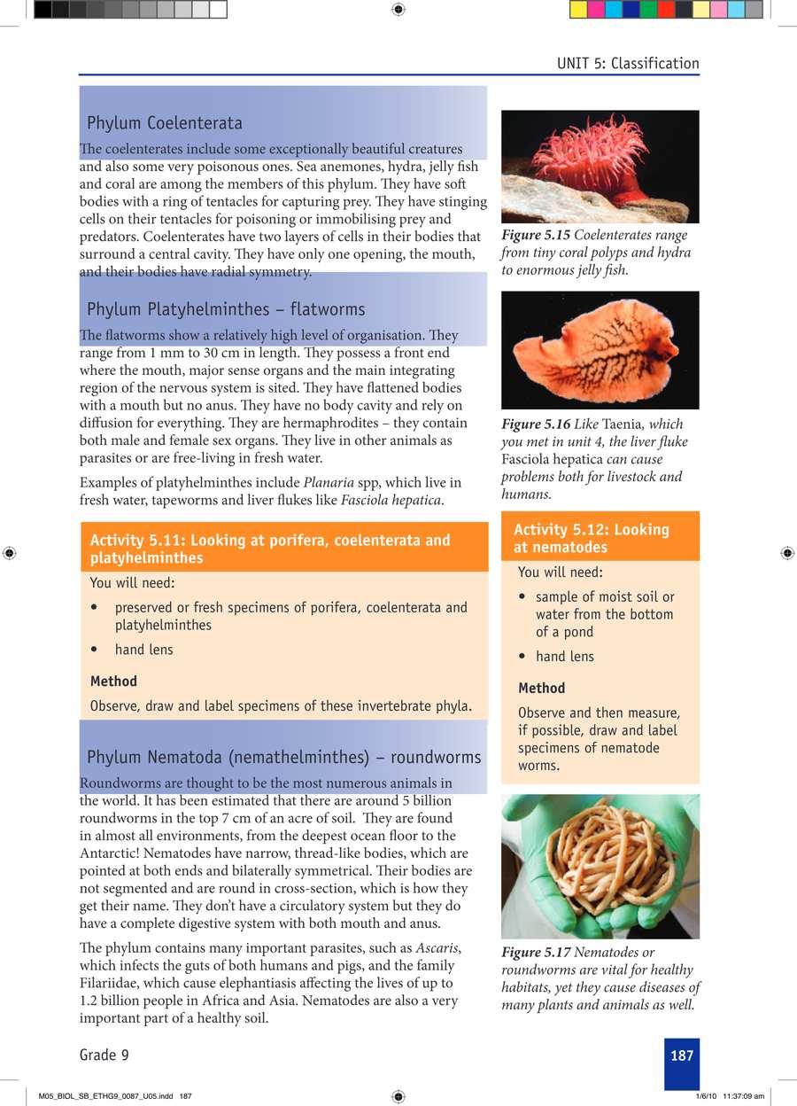 Biology grade 9                                      part 3                                  page 17