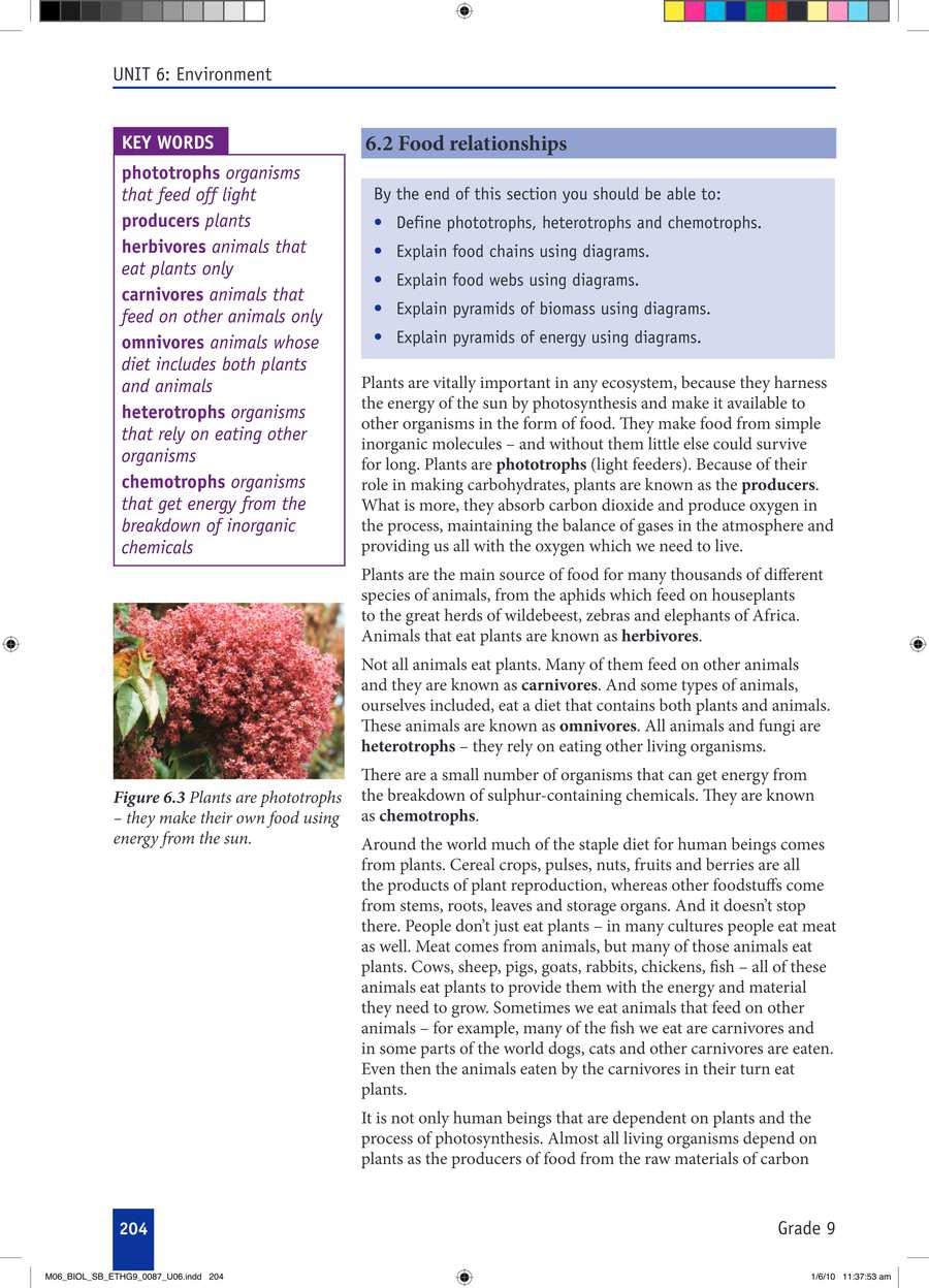 Biology grade 9                                      part 3                                  page 34