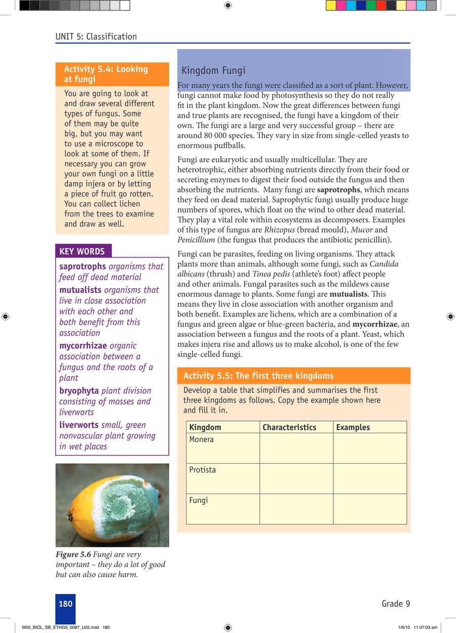 Biology grade 9                                      part 3                                  page 10